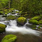 Smoky Mountains Paradise - Great Smoky Mountains Gatlinburg TN by Dave Allen