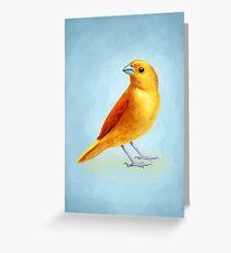 Wild Canary Greeting Card