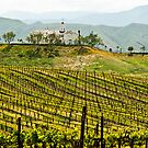 Vineyard Dream Home by Wanda Staples