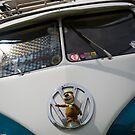 VW 9845 by Steve Woods