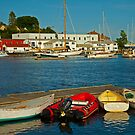 All is Quiet in the Harbor by Karol Livote