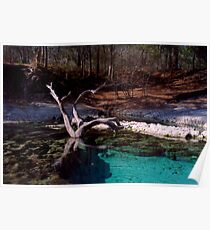 Little River Spring. Poster