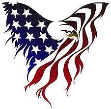 American Flag Byrd by 2024Graphyx