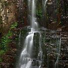 MInnamurra top falls by donnnnnny