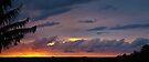 Sunrise pano #2, 26 June 2012 by Odille Esmonde-Morgan