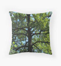 Balsam Poplar Crown Throw Pillow
