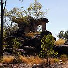 Unusual rock formation in the Northern Territory by georgieboy98