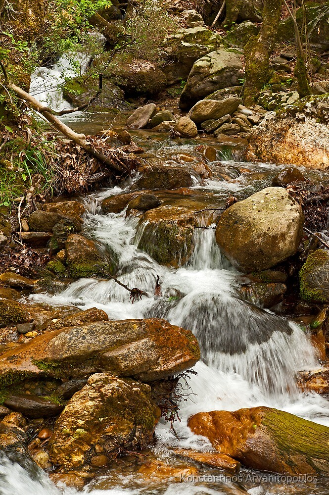 A rocky creek in the forest by Konstantinos Arvanitopoulos