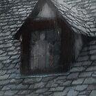 Ghost Rain by RC deWinter