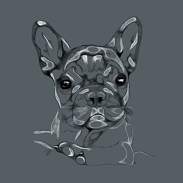 Sketchy Frenchie by beththompsonart