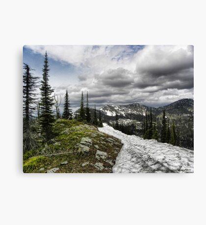 Montana Summer Canvas Print