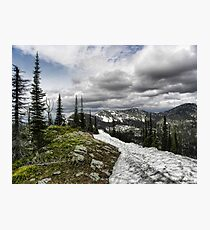 Montana Summer Photographic Print