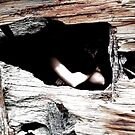 Photoshoot - 'Hidden' by Vicki Spindler (VHS Photography)