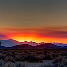 Mojave Desert Sunset by Toby Harriman