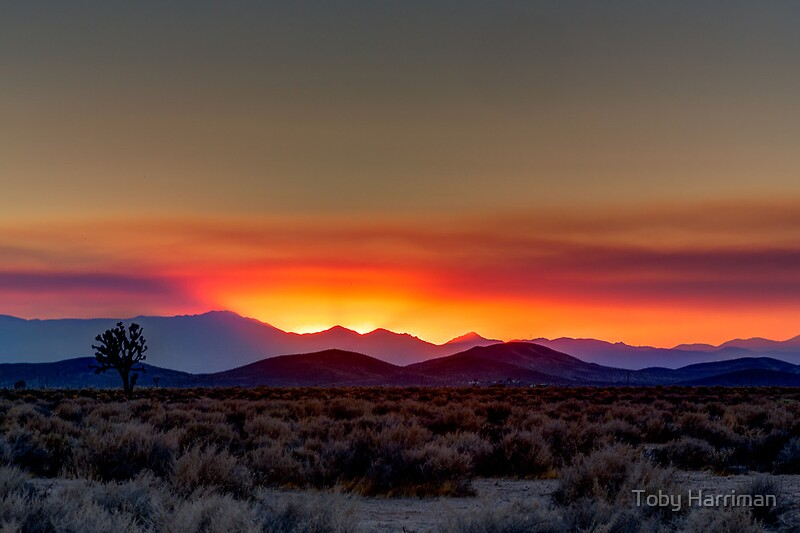 Quot Mojave Desert Sunset Quot By Toby Harriman Redbubble
