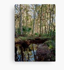 Parker Slough #7. Canvas Print