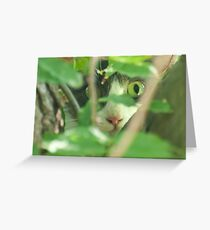 You can't see me! Greeting Card