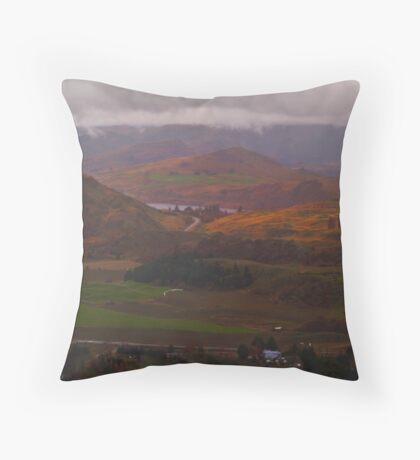 The Road from Arrowtown Throw Pillow