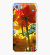 Tulips 8 iPhone Case/Skin