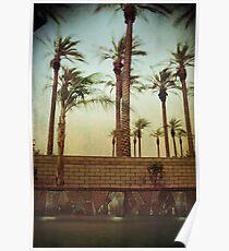 Rustling Palms Poster