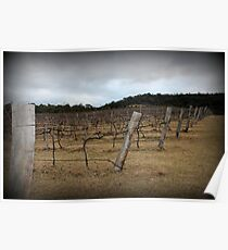 Winter Winery Poster