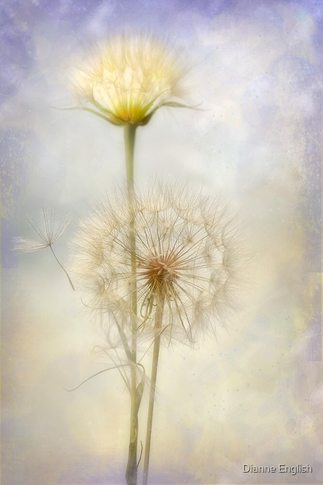Dandelion Creation by Dianne English