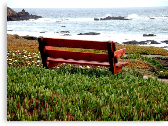 Seat For Two By The Sea by pandabear510