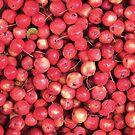 Lots of little... cherries? by Marjolein Katsma