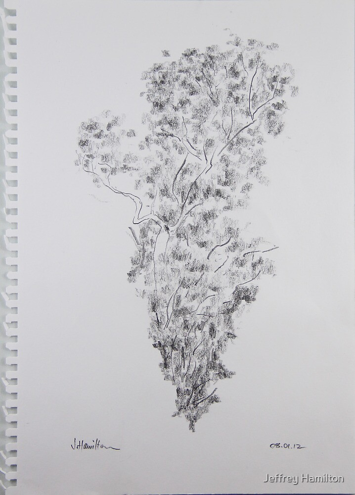 Line and Shade by Jeffrey Hamilton
