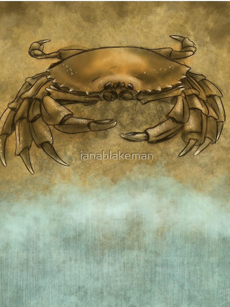 Beach Crab by ianablakeman