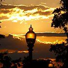 Sun Light by picturick