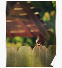 Sittin' on a Fence Poster