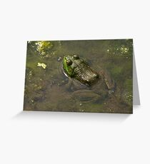 Frog April Greeting Card