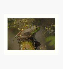 Frog September Art Print