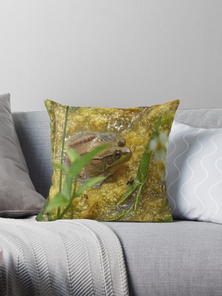 Frog August II by Thomas Murphy