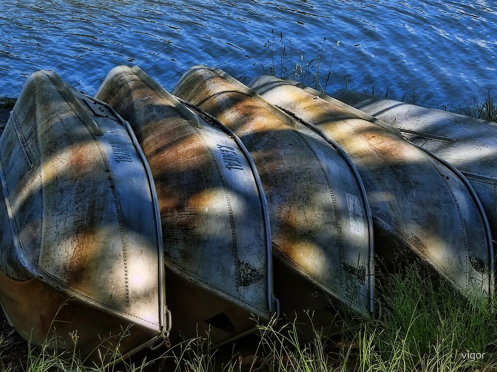 5 row boats in a row by vigor
