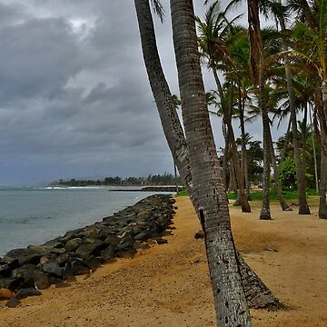 Kauai by bsmf