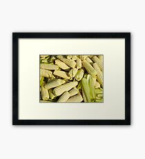 Lots of little corns - at the market Framed Print