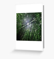 Forrest Fairy Greeting Card