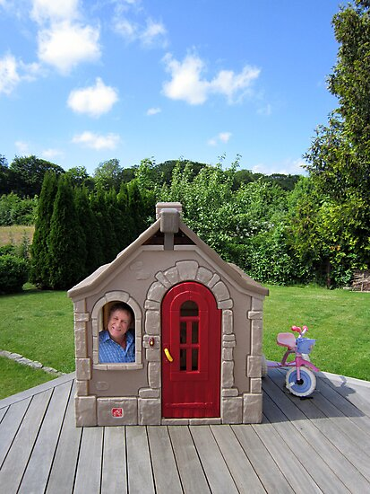 At Home In Denmark by John Douglas