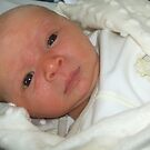 Our First Grandson is Born  by Ann Persse