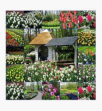Wishing Well - Colourful Keukenhof Collage Photographic Print