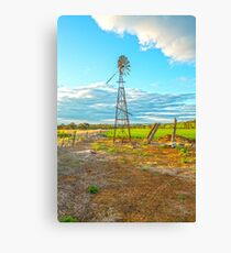 Standing Tall....  Canvas Print