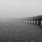 The Fog of Silence by dgscotland