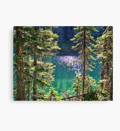Hall Lake Canvas Print