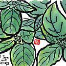 Basil (the Herb Series) by dosankodebbie