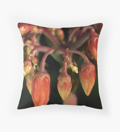 We are not Chillies Throw Pillow