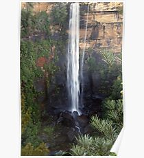 Fitzroy Falls, NSW Poster