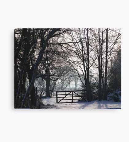 Crisp Winter Day Canvas Print