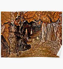 Florida Caverns #1. Marianna. Poster